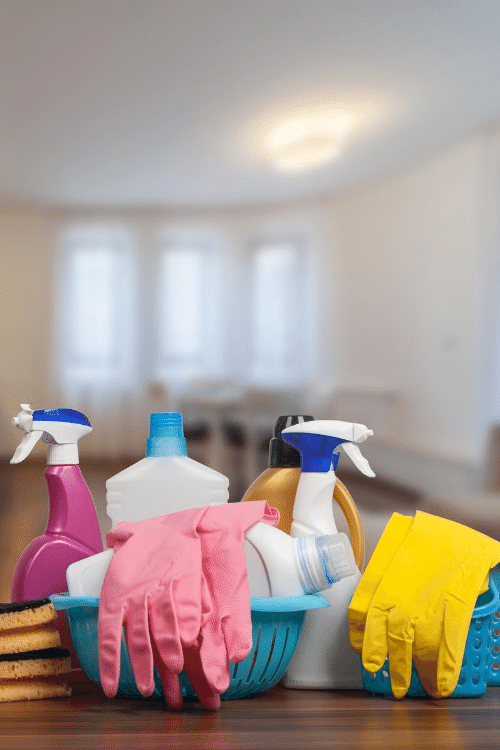 House Cleaning Services Bellevue WA