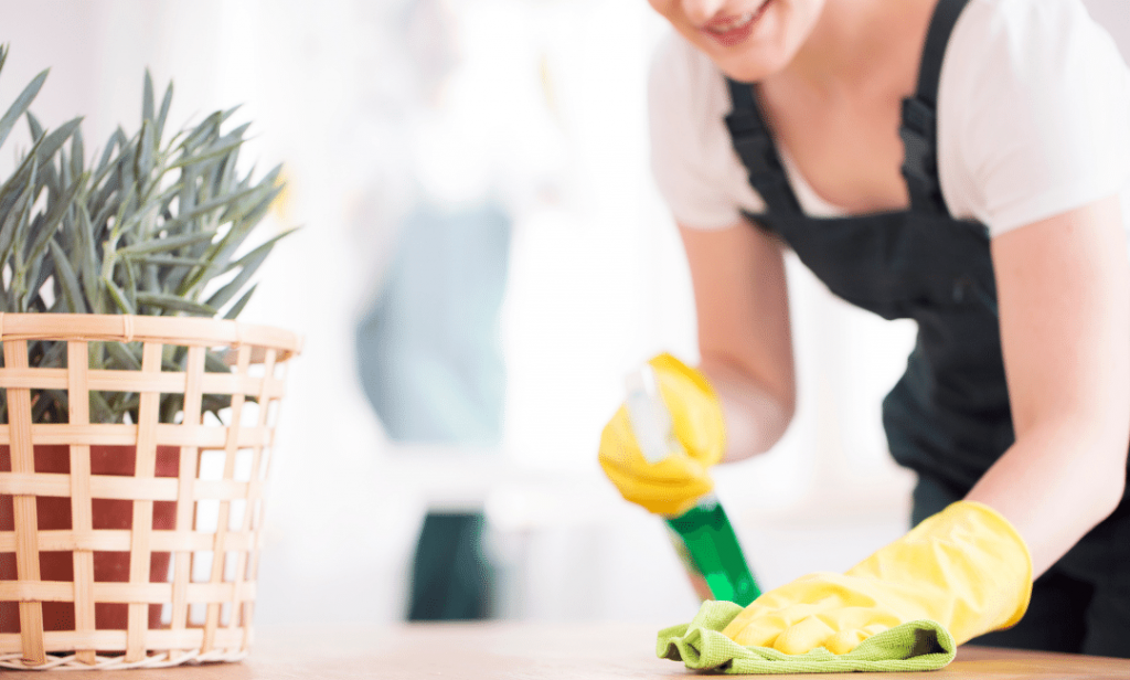 sparkling homes cleaning service in bellevue washington