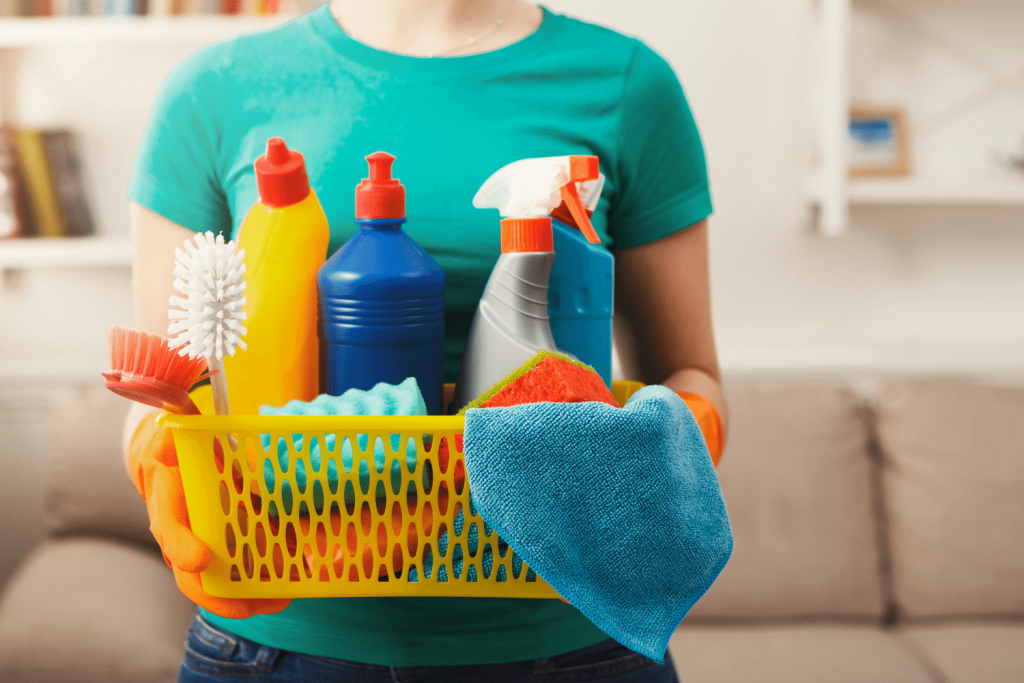 move out cleaning apartment cleaning carpet cleaning and more